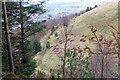 NT3337 : Path on Pirn Hill, Innerleithen by Jim Barton