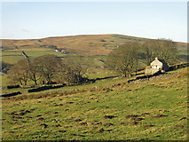NY9539 : Rough pastures between Shepherd's House and Shepherd's Cottage by Mike Quinn