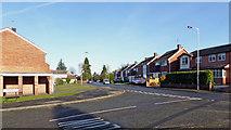 SO9095 : Mount Road in Upper Penn, Wolverhampton by Roger  Kidd
