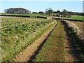 SO9639 : Track on Bredon Hill by Philip Halling