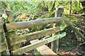 SX7579 : Dangerous stile near Leighon Lodge by Derek Harper