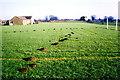 ST8180 : Trinity School Sports Field, Acton Turville, Gloucestershire 1983 by Ray Bird