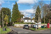 TQ2255 : Ebbisham Lane by Ian Capper