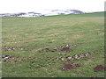 NT5463 : Brown Rig, near Longyester by M J Richardson
