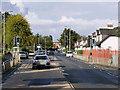 NS3875 : Pedestrian Traffic Lights on Cardross Road, Dumbarton by David Dixon