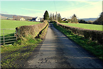 H4681 : Castleroddy Road, Castleroddy Glebe by Kenneth  Allen