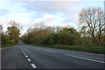 SP7345 : The A5, Paulerspury by David Howard
