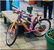 NN1073 : Someone's knitted a bike? by Bill Kasman