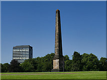 NS5964 : Glasgow Green -  Nelson monument by Stephen Craven