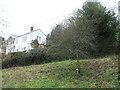 ST7530 : A memorial tree on Underhill by Neil Owen