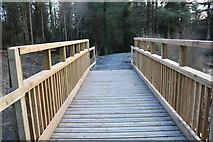 NX4465 : Footbridge at Bruntis Loch by Billy McCrorie