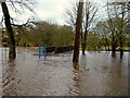 H4772 : Flooding caused by Storm Ciara by Kenneth  Allen