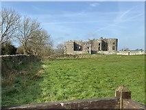 SN0403 : Carew Castle by Alan Hughes