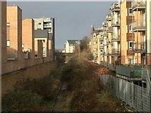 NT2774 : Powderhall railway by Richard Webb