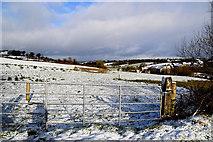 H5559 : Snow, Garvaghy by Kenneth  Allen