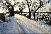 H5559 : Snow along Tycanny Road by Kenneth  Allen