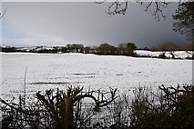H5559 : Snow covered fields, Tycanny by Kenneth  Allen