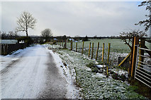 H5064 : Meenmore Road, Moylagh by Kenneth  Allen