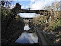 SP0189 : Galton Bridge by Chris Allen