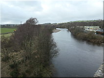 NY7063 : River South Tyne, Haltwhistle by Christine Johnstone