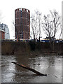 SE2933 : The River Aire at Whitehall Riverside, with tree branch by Stephen Craven