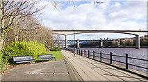 NZ2463 : Broad, paved walkway beside River Tyne by Trevor Littlewood
