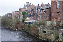 SJ9698 : River Tame, Stalybridge by Stephen McKay