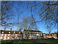 TQ8833 : Ashford Road, Tenterden by Phil Brandon Hunter