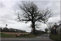 TQ5885 : Ockendon Road at the junction of Pea Lane by David Howard