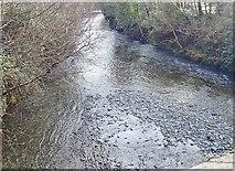 J3731 : The Shimna River below Newcastle's New Bridge by Eric Jones