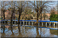 TQ1656 : Flood defences - Emlyn Lane by Ian Capper