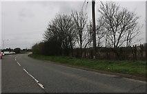 TQ6180 : Stifford Clays Road, North Stifford by David Howard