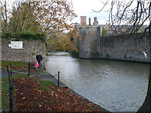ST5545 : The Moat of the Bishop's Palace by Eirian Evans