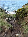 NJ1570 : Path down to Clashach Cove by John Lucas