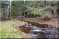 NH7579 : Aldie Burn Trail by valenta