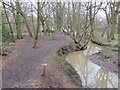 TQ3298 : Path alongside Turkey Brook, near Enfield by Malc McDonald