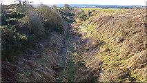 NJ1263 : Burghead Branch Line by Anne Burgess