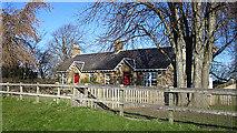 NJ1263 : Cottages at North Alves by Anne Burgess