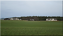 NJ1464 : Field near Easterton by Anne Burgess