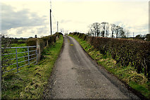 H5371 : Dreenan Road, Bracky by Kenneth  Allen