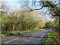 TQ5639 : Langton Road (A264) at Rusthall Common by Malc McDonald