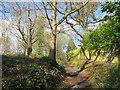 TQ5639 : Path on Rusthall Common by Malc McDonald
