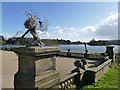 SJ8640 : Trentham Gardens: 'wishes do come true' (back) by Stephen Craven