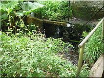 SO3656 : Waterwheel at Westonbury Mill Gardens by Fabian Musto