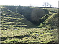 NY9822 : Former stone quarry, above Hayberry Well by Christine Johnstone