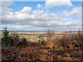 SO4873 : View from Lower Whitcliffe by Jeff Buck
