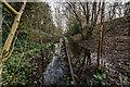 SJ9152 : Stoke to Leek Line (Disused), Stockton Brook by Brian Deegan