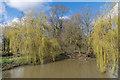 TQ1655 : River Mole by Ian Capper