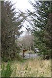 NJ4750 : Forest Access near Cantly Croft by Anne Burgess