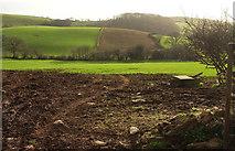 SX8460 : Farmland, Longcombe by Derek Harper
